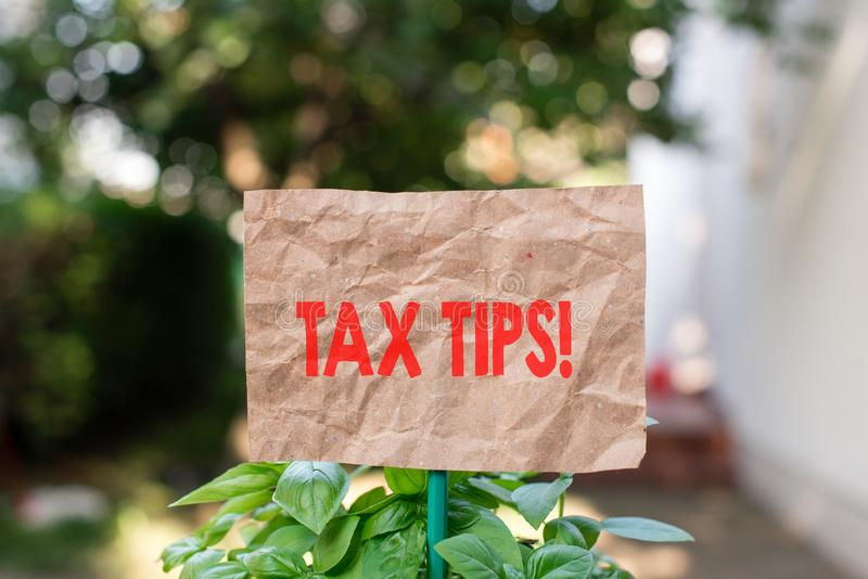 Word writing text Tax Tips. Business concept for compulsory contribution to state revenue levied by government Plain. Word writing text Tax Tips. Business photo stock photography
