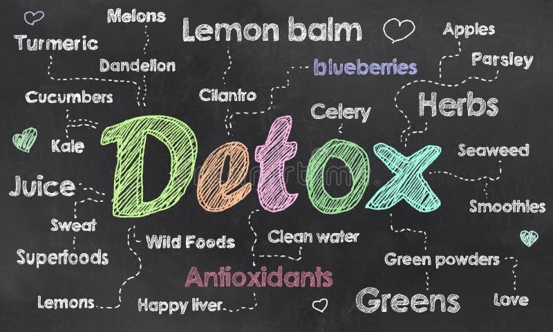 Words of Detox on Blackboard. Buzzwords for Detox written on Blackboard with Chalk stock illustration