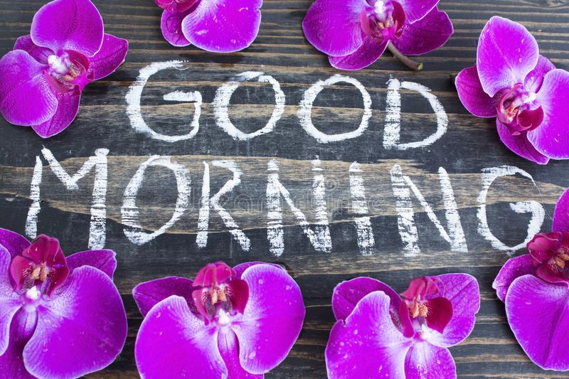 Words Good Morning with Orchids stock photo