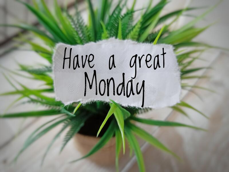 Words Have a great monday on piece of paper pgreen plant on blurry white wooden backgroundlace on. Words Have a great monday on piece of paper for motivational stock photo
