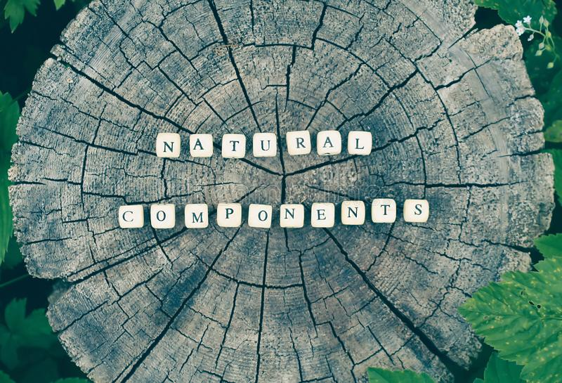Words natural components of alphabet beads on a tree stump surface in the forest. Words natural components of wooden alphabet beads on a tree stump surface in royalty free stock photography