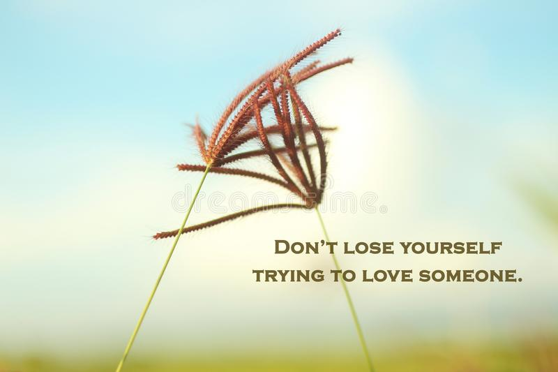 Love inspirational motivational words - Do not lose yourself trying to love someone. With grass flowers on blue sky background. Words of wisdom concept. Love stock image