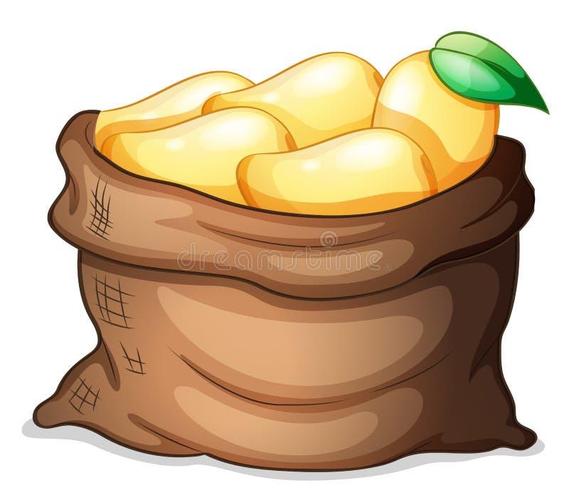 Worek dojrzali mango royalty ilustracja
