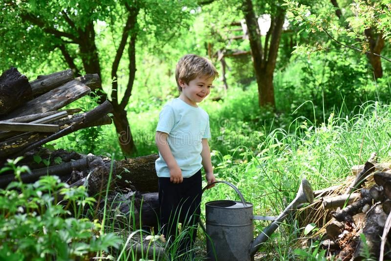 Work in the garden. The child is watering the plants. Spring and summer in nature. Happy childhood. royalty free stock photography