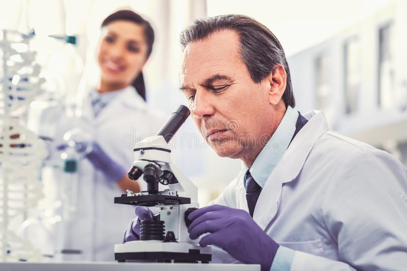 Old chemist wearing gloves working in laboratory. Work in laboratory. Old chemist feeling responsible while wearing gloves working in light modern laboratory royalty free stock photos
