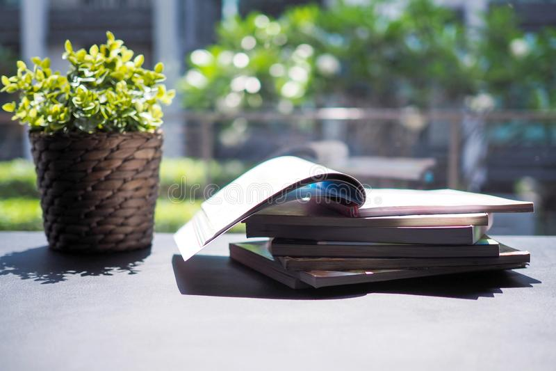 Stack of books in a sunny library with ornamental trees For refreshing stock images