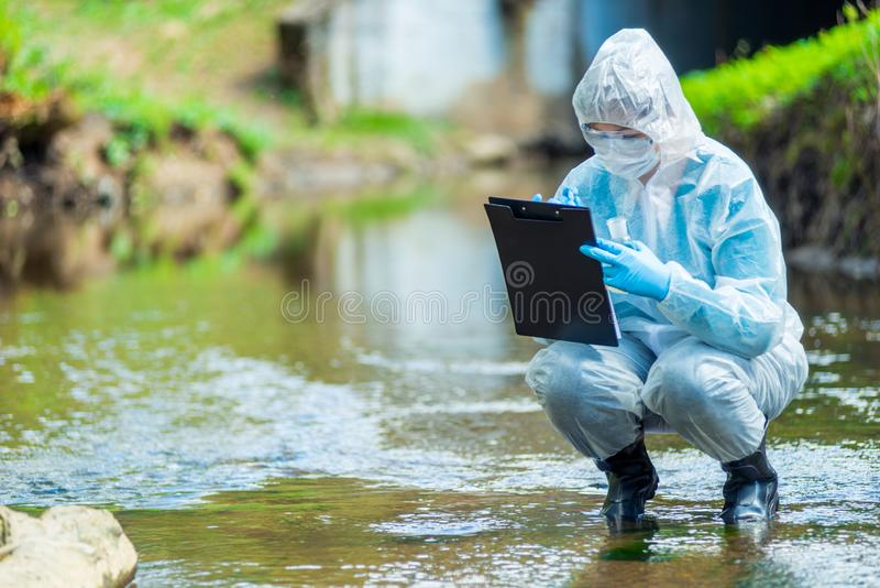 The work of a scientist ecologist, a portrait of an employee who conducts a study of water. In a creek royalty free stock images