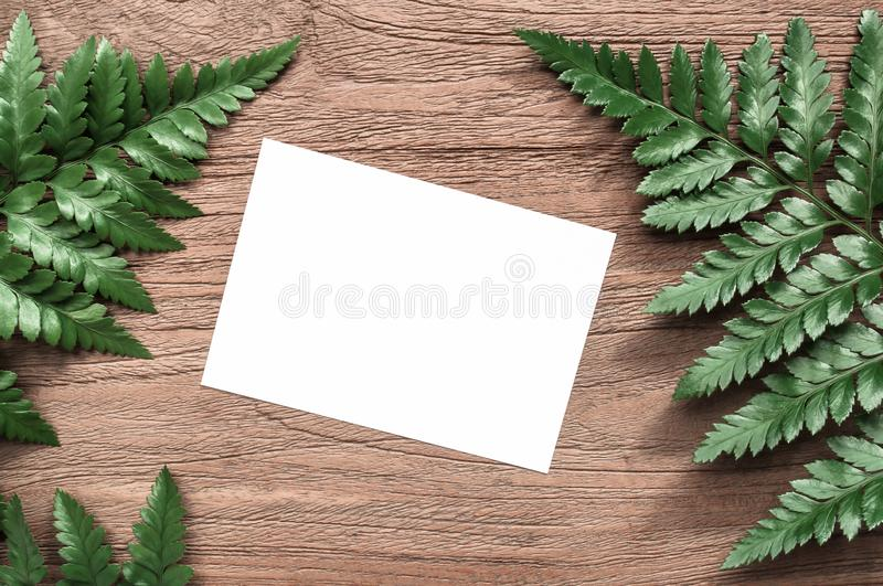 Work space,white paper or note paper with frame green leaves ,fern on wooden table backdrop.Suitable for save the date or special stock photo