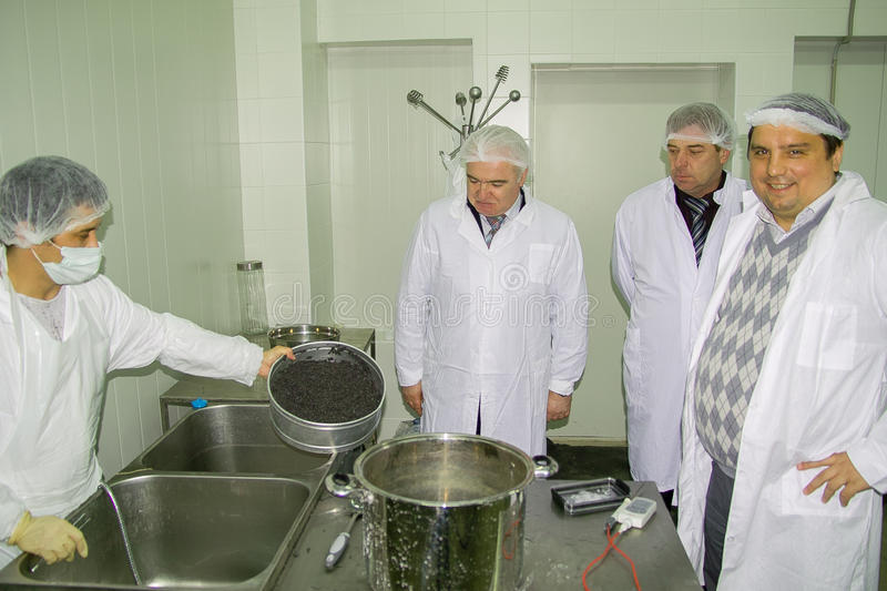 The work of the sturgeon plant in the Kaluga region of Russia. royalty free stock photography