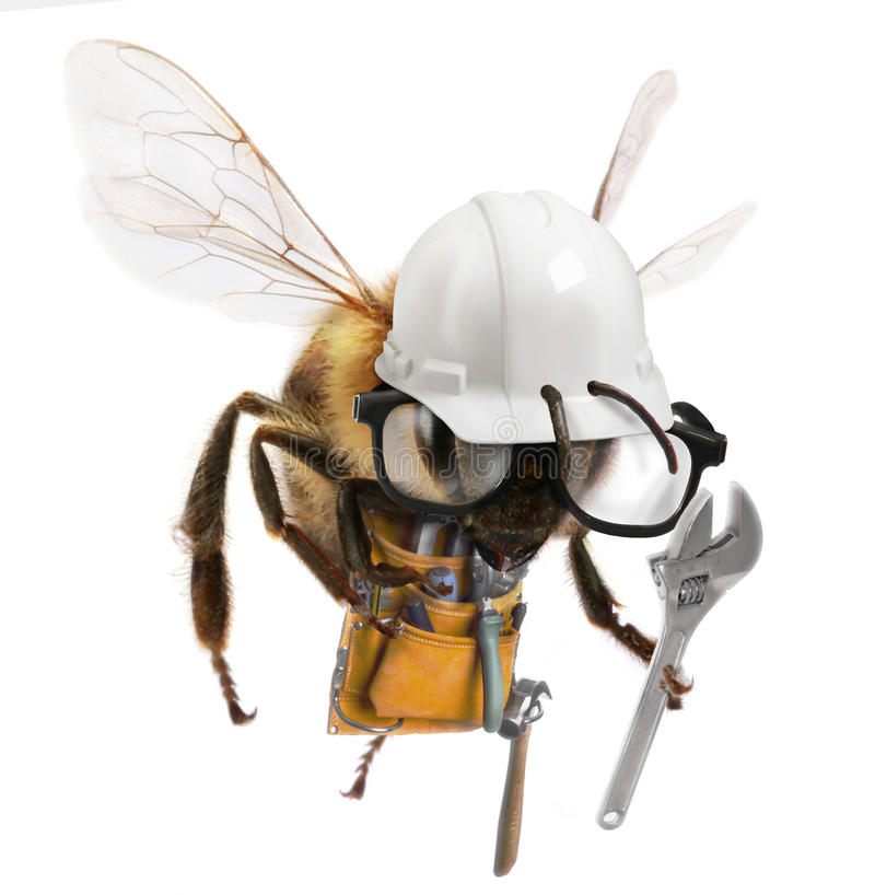 Worker Bee. A worker Bee with construction attire and equipment royalty free stock photo