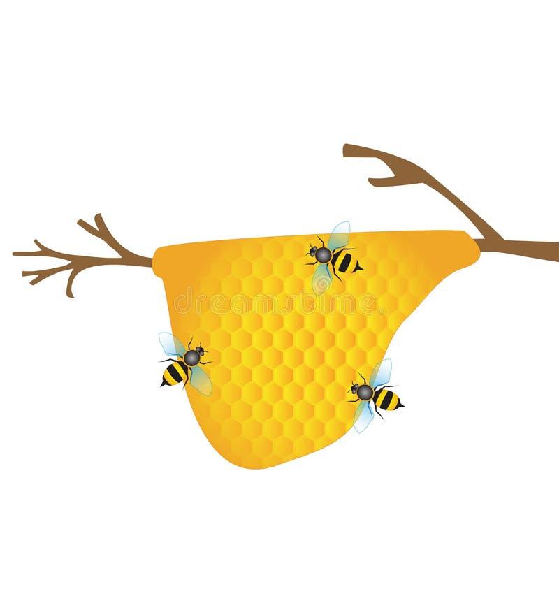 Worker bees on honey cells vector illustration
