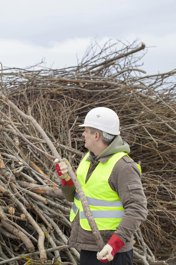 Download Worker with branches stock image. Image of heating, backgrounds - 30389659