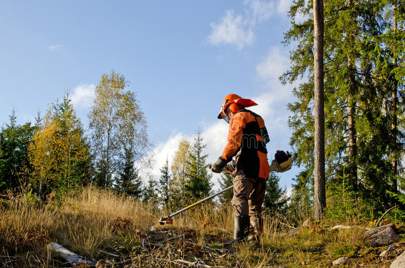 Download Worker With A Brush Cutter Stock Photo - Image: 27256720