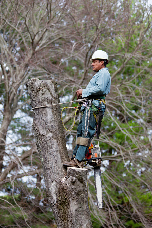 Worker with Chainsaw taking a Break