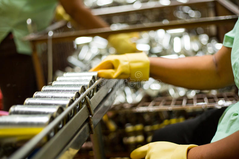 Worker are cleanning raw material Sardines fishes stock photography