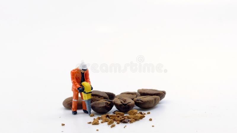 Worker drilling coffee beans royalty free stock image
