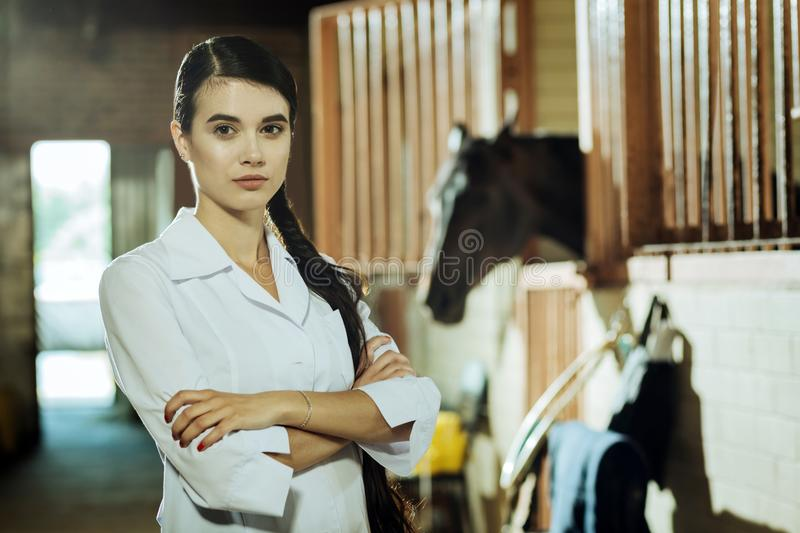 Worker of epidemiological service coming to stable. Epidemiological service. Professional experienced worker of epidemiological service coming to stable for stock images