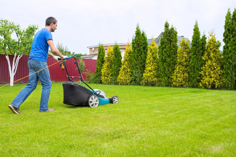 A worker in the garden with a lawn mower is cutting grass in a sunny summer day in the backyard.  stock photos