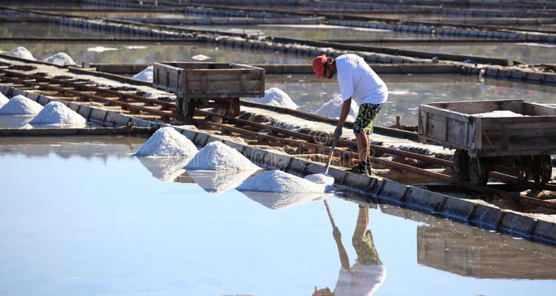 Worker gathering the salt royalty free stock images