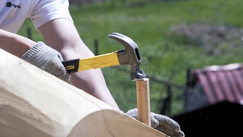 Worker hammering wooden peg. Clip. Close-up of worker on roof of wooden house hammering wooden peg. Builder works with royalty free stock images