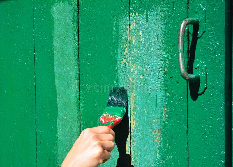 Worker hand with brush painting wooden door. royalty free stock photo