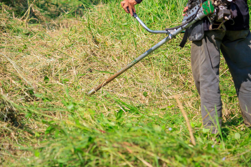 Worker Mowing the Grass stock photo