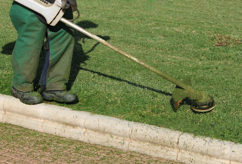 Worker mowing the lawns stock image