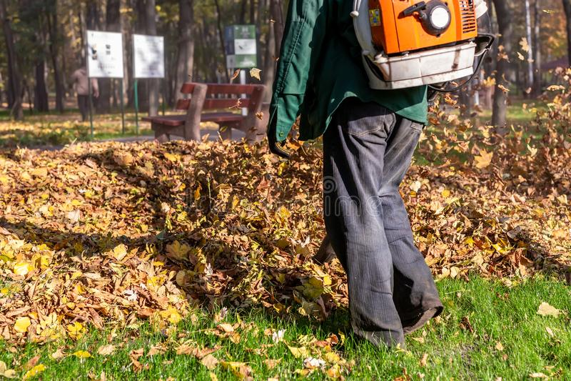 Worker operating heavy duty leaf blower in city park. Removing fallen leaves in autumn. Leaves swirling up. Foliage cleaning in stock photography