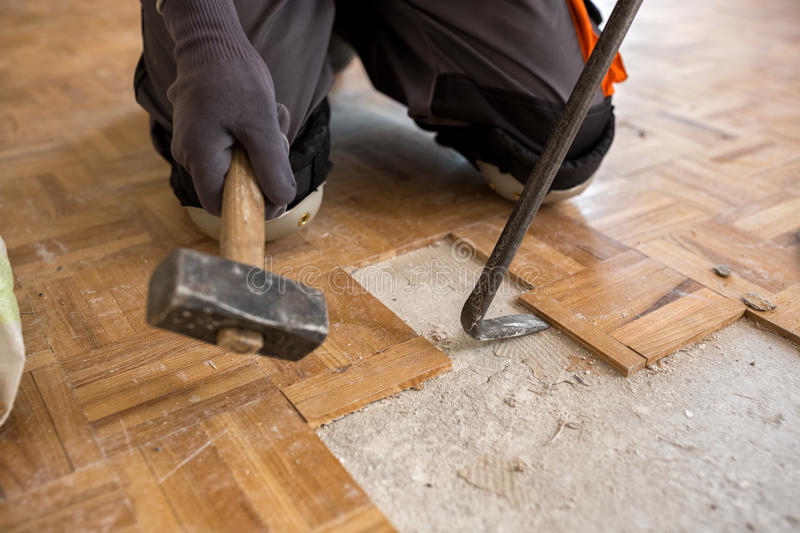 Worker removes old fparquet, renovation home royalty free stock images