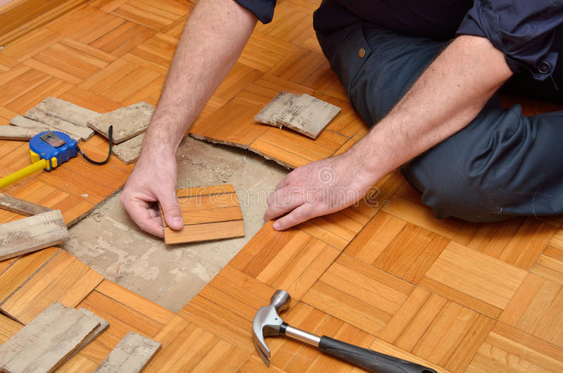 Worker Repairing Damaged Parquet in Apartment stock photo