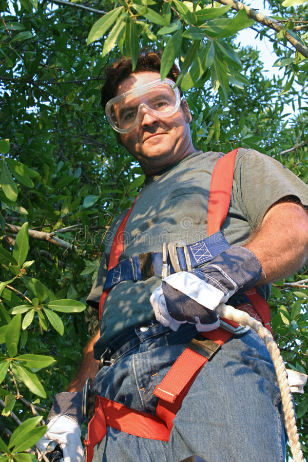 Worker in Safety Gear. A worker in work clothes with safety goggles, a safety harness, and gloves. He's preparing to trim a tree royalty free stock images