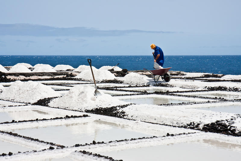 Download Worker At Salt Extraction La Palma Royalty Free Stock Photo - Image: 22729575