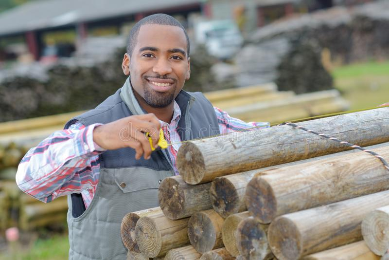 Worker securing timber. A worker securing the timber royalty free stock image
