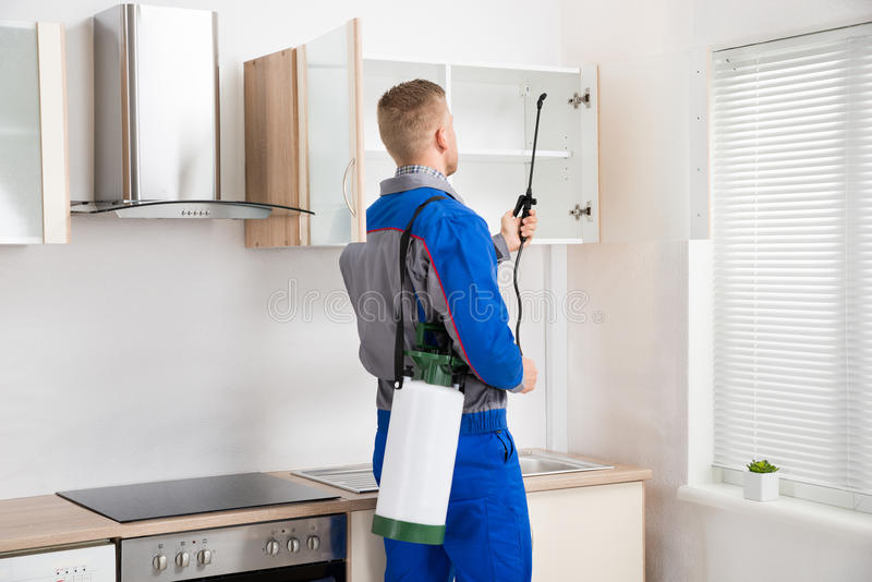 Worker Spraying Insecticide On Shelf. Young Worker Spraying Insecticide On Shelf Of Kitchen Room royalty free stock photography