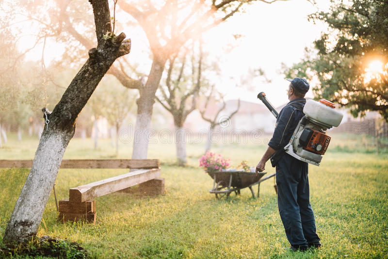 Worker spraying organic pesticides for garden treatment. Industrial worker spraying organic pesticides for garden treatment royalty free stock images