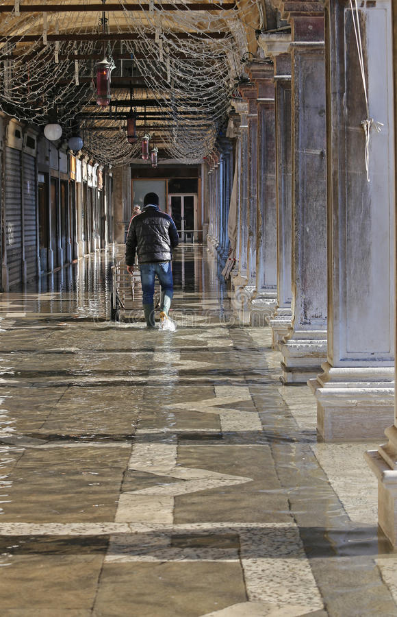 Worker with the transport cart and the boots at high tide in venice royalty free stock image
