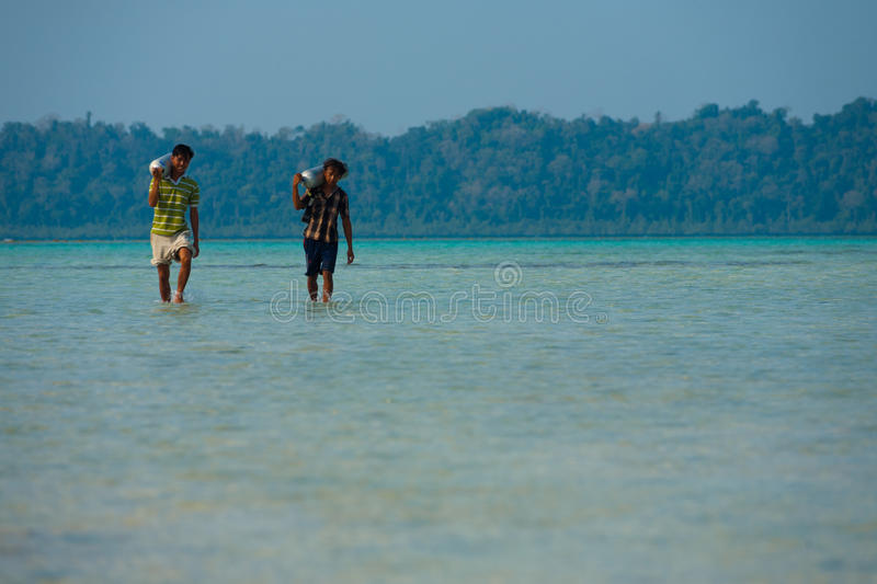 Workers Carry Diving Oxygen Tank Havelock Tourism