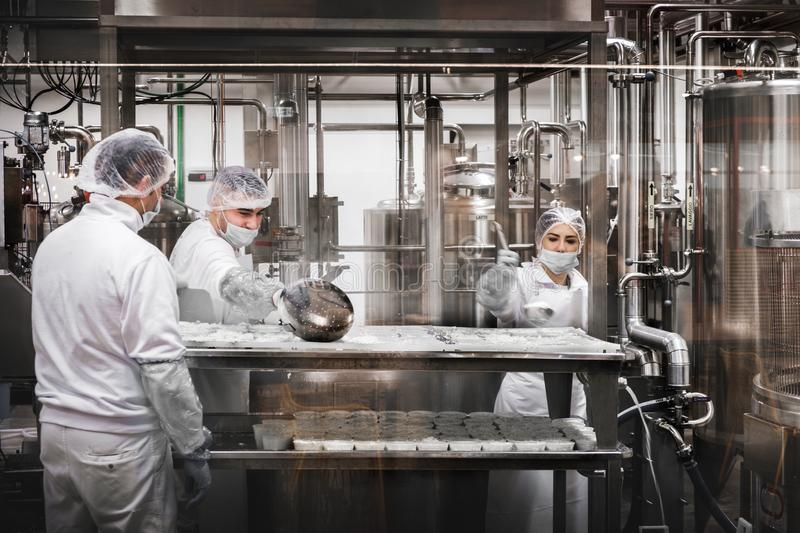 Workers at the cheese factory preparing Ricotta cheese royalty free stock photo