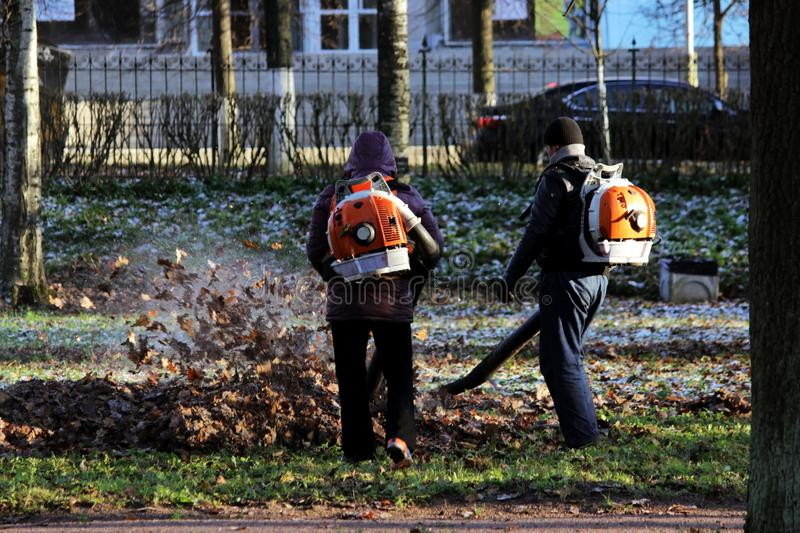 workers with industrial vacuum cleaners collect fallen maple and oak leaves in a heap stock images