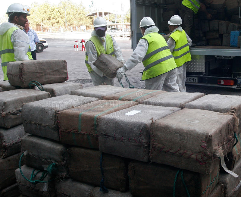 Workers retrieve drug packs from a truck before its destruction. Police workers retrieve packs of drugs from a truck to proceed to its incineration after the royalty free stock photo