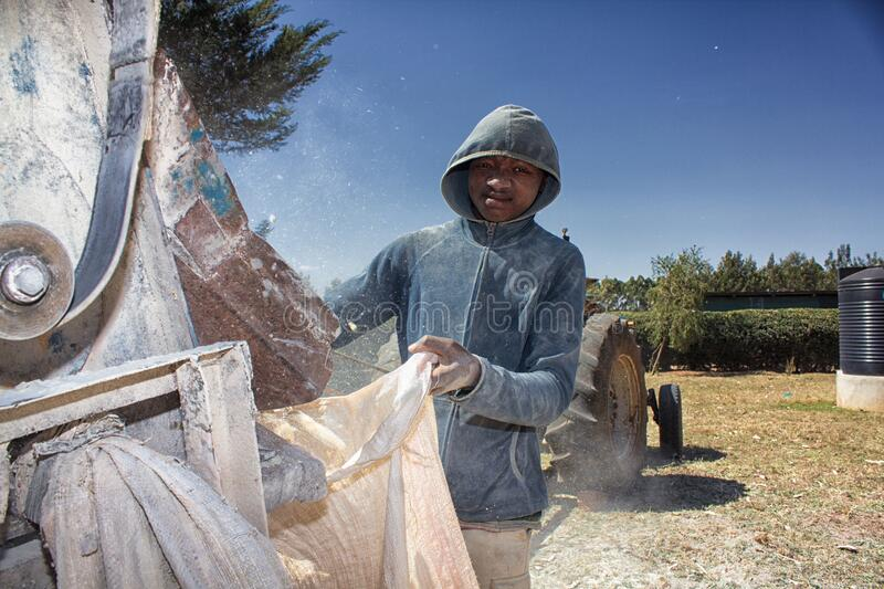 Workers shelling maize in Western Kenya. A teenage boy holds up a sack to collect maize cobs as a tractor sheller prepares maize at a farm in western Kenya stock photo
