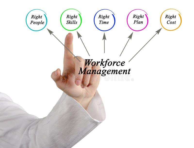 Workforce Management stock images