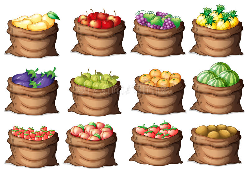Worki z różnymi owoc ilustracja wektor