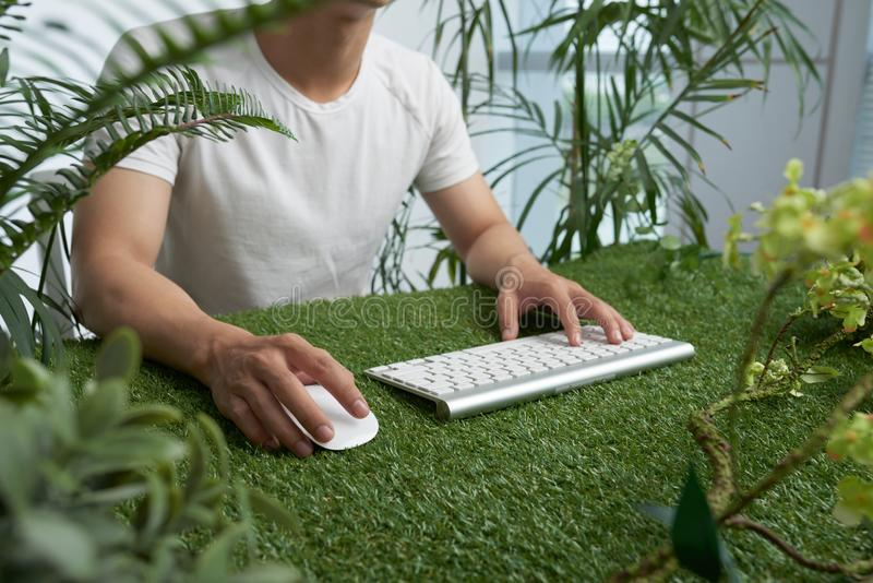 Workig в зеленой окружающей среде стоковые фотографии rf