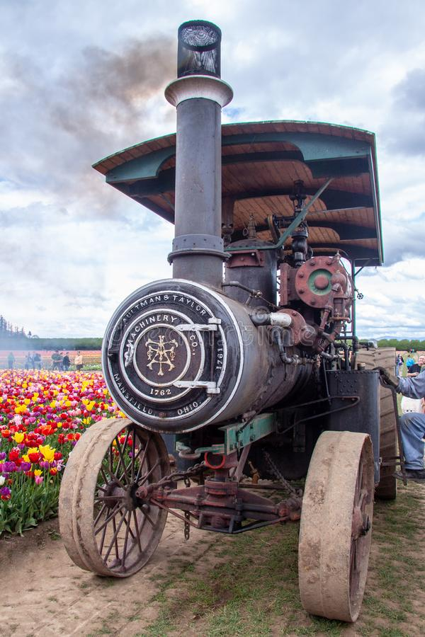 Working Aultman & Taylor steam tractor at Wooden Shoe tulip farm. During tulip festival, Woodburn, Oregon stock photos
