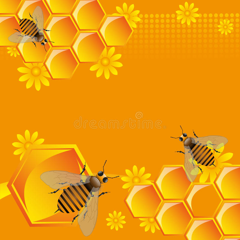 Download Working bees stock vector. Illustration of bumble, hive - 24806511