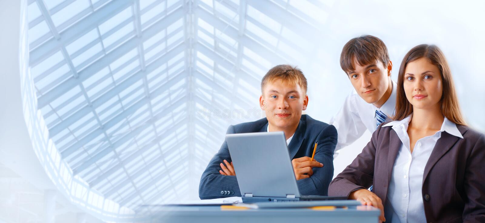 Download Working Business Team Royalty Free Stock Photo - Image: 12620015