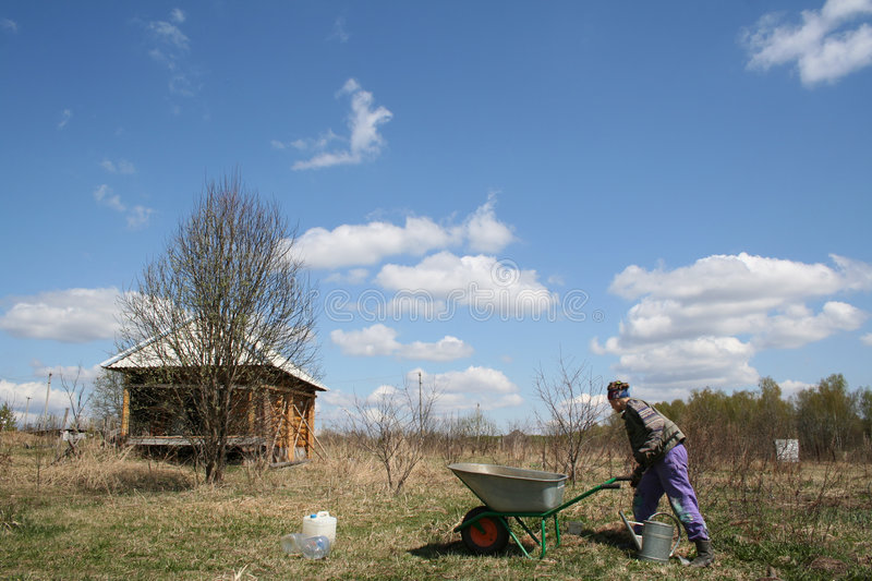 Working at dacha. Woman working at dacha with wheelbarrow. Sunny day at nature stock photography