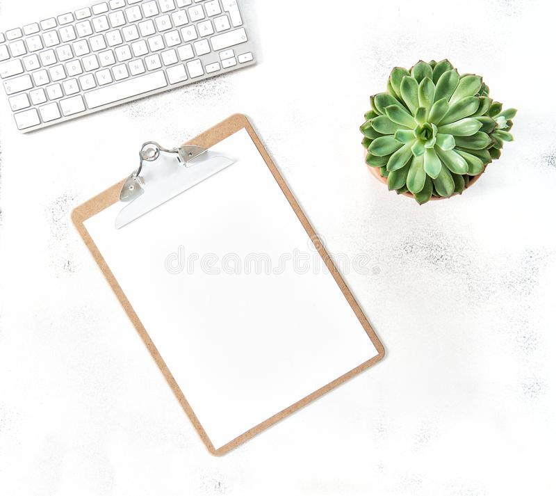 Working desk clipboard succulent plant Flat lay mockup royalty free stock image