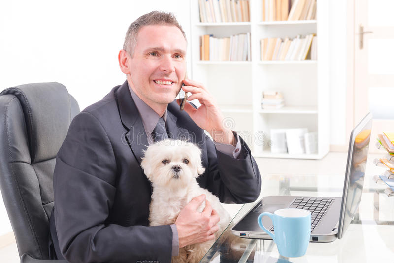 Working with dog in the office. Man working in the office and holding his liitle dog stock image